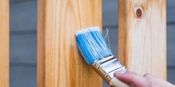 Fence | Paint | Construction