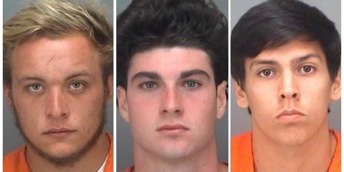 Crime | PInellas Sheriff | Arrests