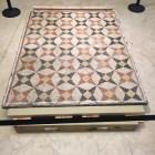 Museum of Fine Arts | Mosaics | TB Reporter