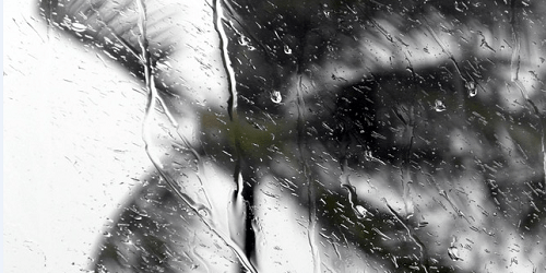 Tropical Storm | Weather | Rain