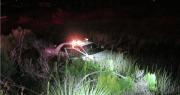 Hernando Deputy Avoids Deer, Lands in Canal