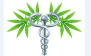 National Tour of Pro-Medical Marijuana Film Kicks Off in Tampa
