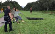 Alligator Bites Man in Clearwater
