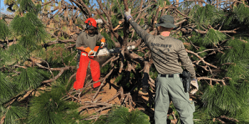 Cutting Debris | Hillsborough Sheriff | Hurricane Michael