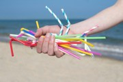 St. Pete Council Votes to Ban Single-Use Plastic Straws