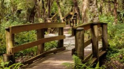 Moccasin Lake Park   CLearwater   Parks Recreation