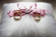 Have a Valentine's Wedding at Florida Botanical Gardens