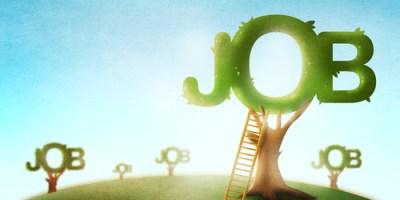 Business | Jobs | Job Fair