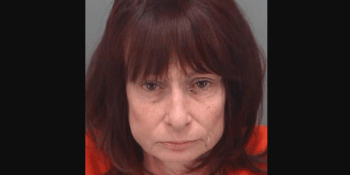 Lorraine Anne Daly   Pinellas Sheriff   Arrests