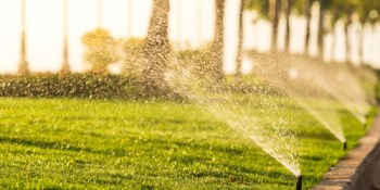 Sprinkler   Water   Environment