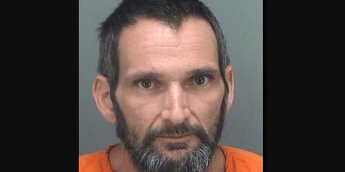 Steven Patrick Tromblee | Pinellas Sheriff | Arrests