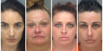 Pinellas Sheriff | Arrests | Crime