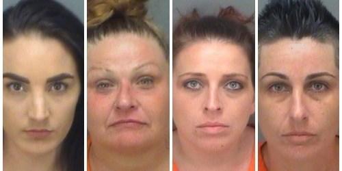 Pinellas Sheriff   Arrests   Crime