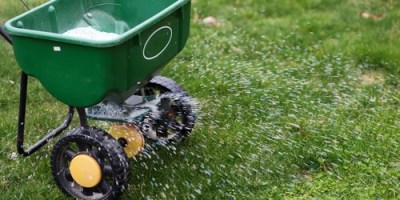Fertilizer | Lawn Care | Gardening