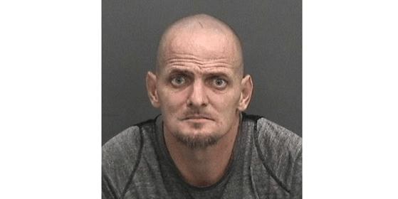 Adam Donald Stratton | Hillsborough Sheriff | Arrests