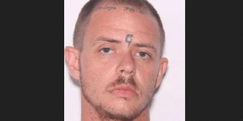 David Michael Brady   Hernando Sheriff   Arrests