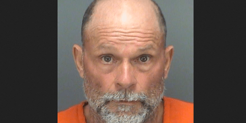Michael Doyle | Pinellas Sheriff | Arrests
