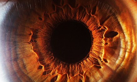 "Photo credit (eye macro photo) - ""Eyes don't lie"" Suren Manvelyan"