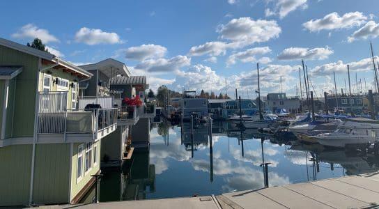 floating homes and boats at Mosquito Creek Marina