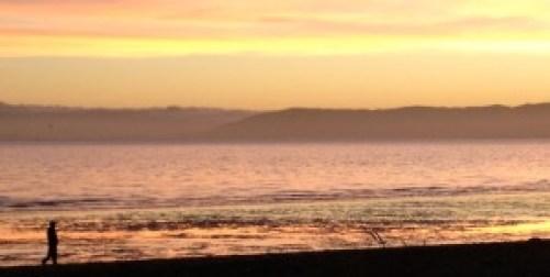 Sunset Alameda shoreline