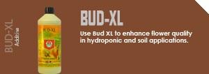 bud_xl