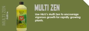 multi_zen