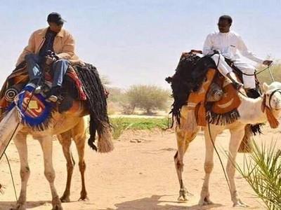 Tchad: une situation de quasi-vacance de pouvoir