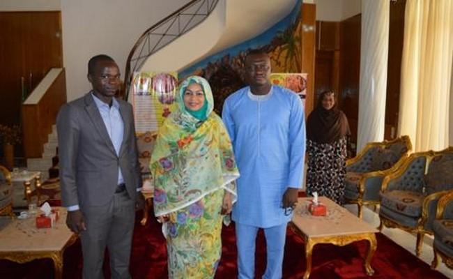 Tchad: quand Nadjo Kaïna tombe dans le piège à oiseaux tendu par Hinda Déby Itno
