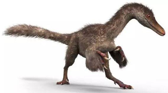 ไดโนเสาร์ในตระกูลเดียวกันกับไทรันโนซอรัส