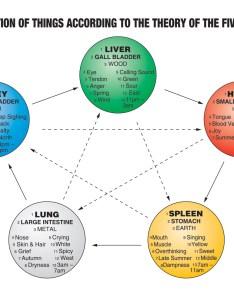 Understanding the five elements   also tcm world rh tcmworld