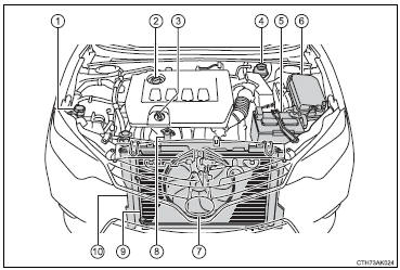 Toyota Corolla Nze 121 Engine Diagram. Toyota. Auto Parts