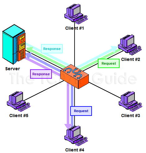 The TCP IP Guide Network Structural Models And Client Server And