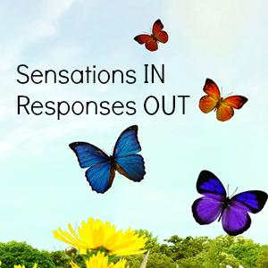 sensation response