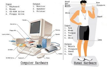 Man-and-Computer