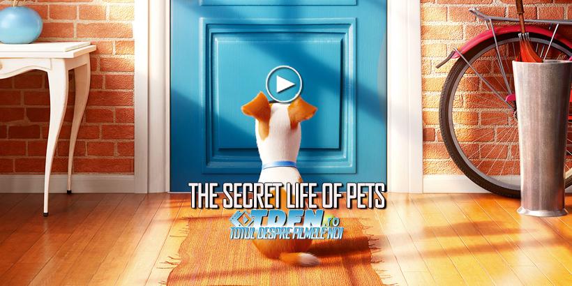 Primul Trailer Pentru Animaţia THE SECRET LIFE OF PETS Dezvăluie Ce Fac Animalele Când Eşti Plecat