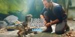 JURASSIC WORLD 3 Se Află Deja În Lucru Şi Are Data De Lansare Confirmată