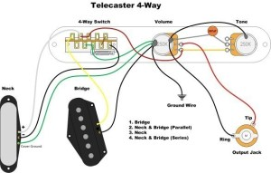 4 way switch problem | Telecaster Guitar Forum