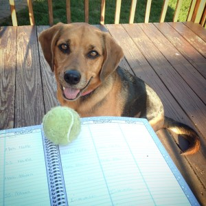 Pre-Injury Boca started the school year helping me lesson plan (she wanted me to teach ball-throwing obviously