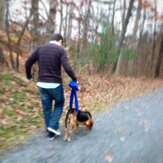 one last hike through the woods - with no use of her hind legs, Rich had to support her hindquarters with a towel