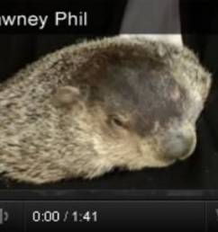 Groundhog Day Videos \u0026 Activities - TeacherVision [ 678 x 1200 Pixel ]