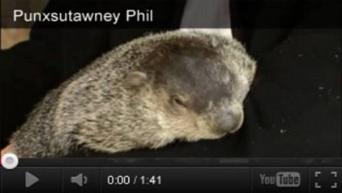 small resolution of Groundhog Day Videos \u0026 Activities - TeacherVision