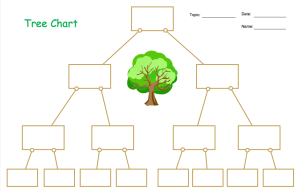 Venn Diagrams and Carroll Diagrams for KS1 | Bar Chart