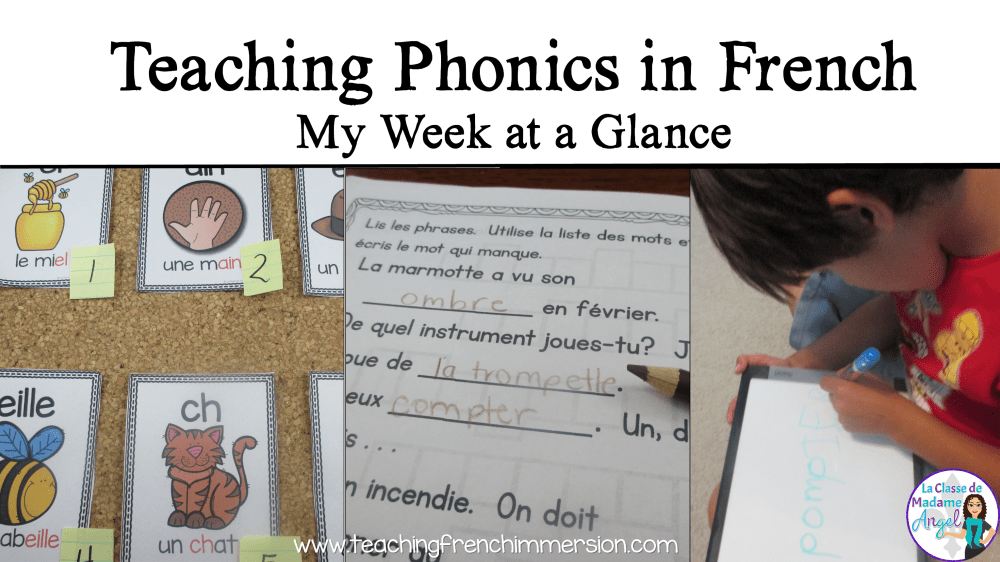 medium resolution of Teaching Phonics in French - Teaching French Immersion: Ideas for the  Primary Classroom