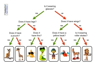 Sorting Animals Resources Teaching Ideas