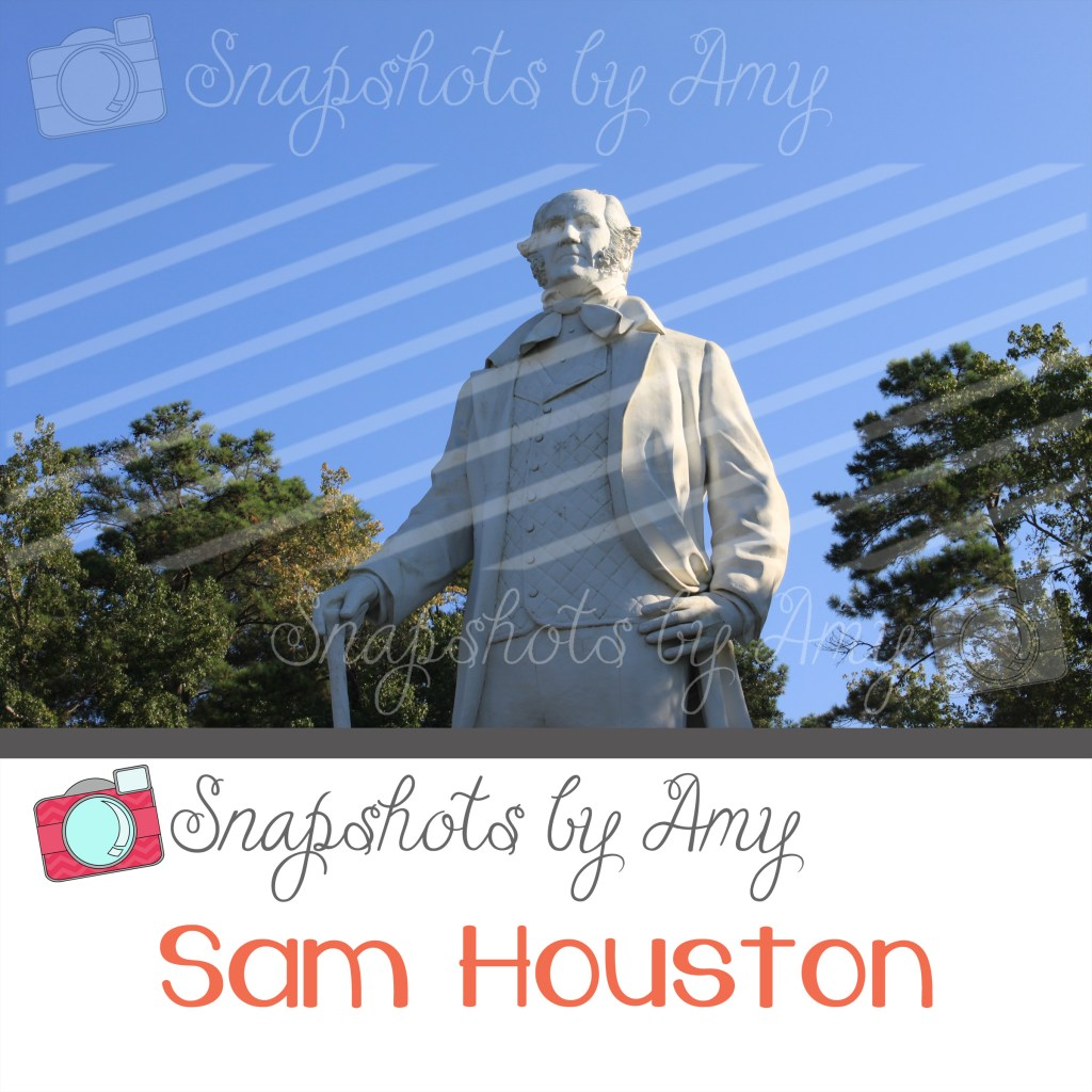 Sam Houston Top Square Preview Image_edited-1