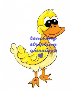 duck wm