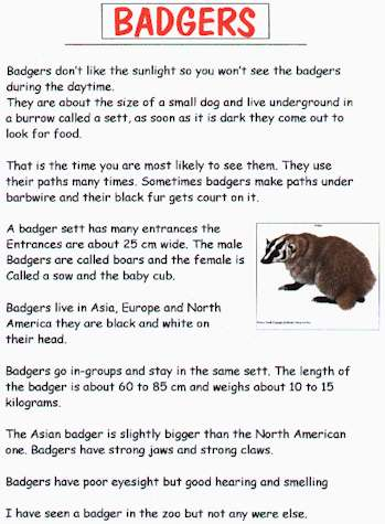 Badgers And Lithuania Project Ideas