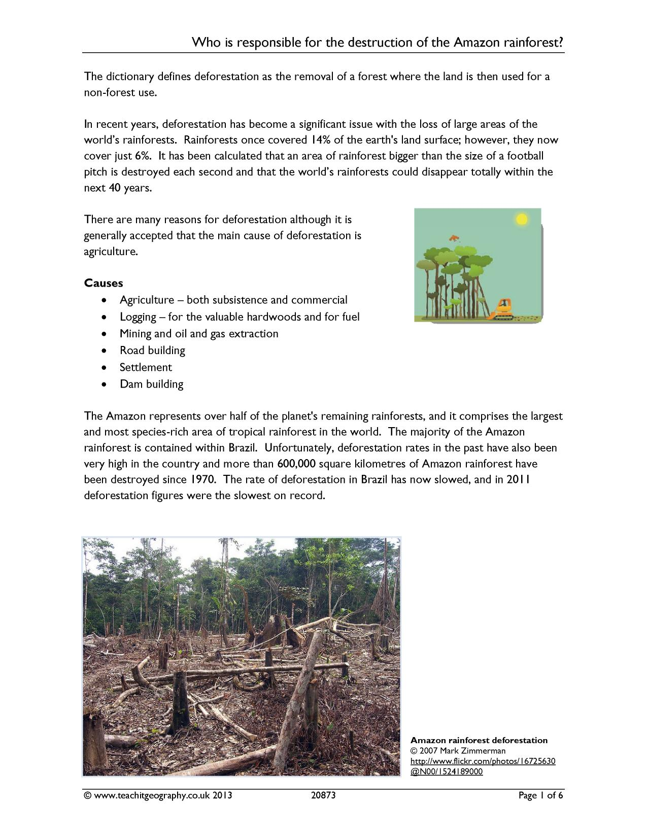 Who Is Responsible For Deforestation In The Amazon Rainforest