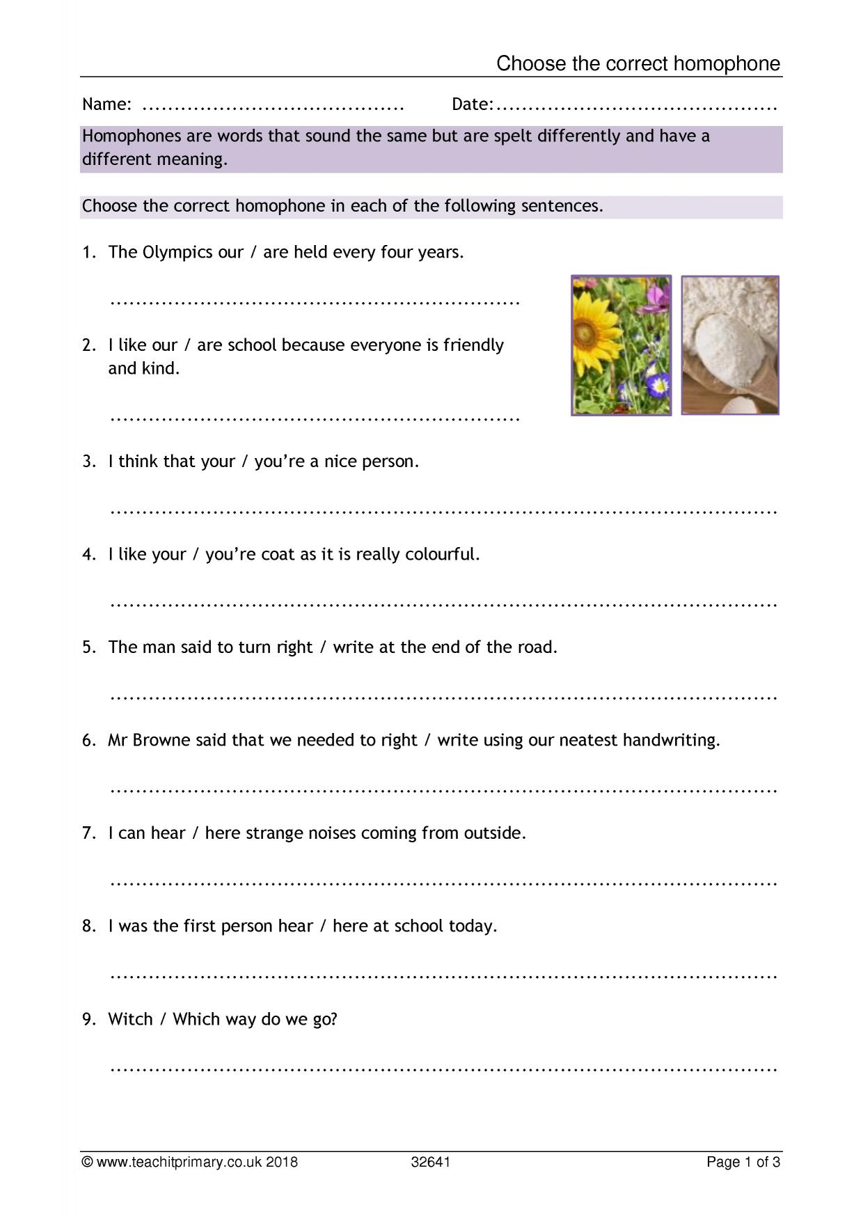 Homophones Worksheet Level 2