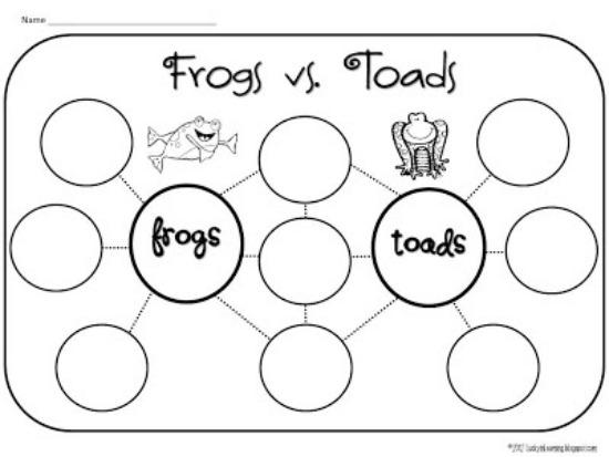 All Worksheets » Frog Facts For Kids Worksheets